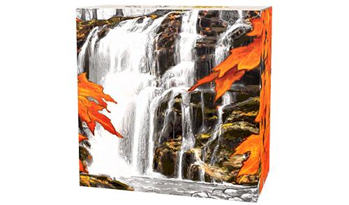 2014_20_dollars_Kanada_Autumn_Falls_Ag_1