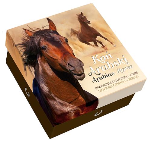 2015_1_NZD_Arabian_horse_Ag_pp_color_etue